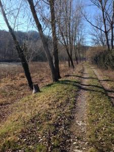 Sentiero Tidone - Azzurra